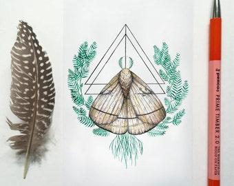 Spirit Animal: The Moth Postcard