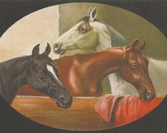 Schonian Stablemates Duo - 1900s Horse Art Postcards - An AHV Archival Editions © Set of Two from the Originals