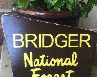 "National Park Sign-Baby Nursery-Bridger-Customizable-8x10"""