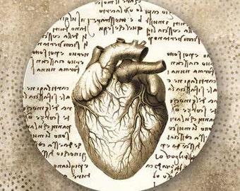 Heart - Da Vinci style melamine plate