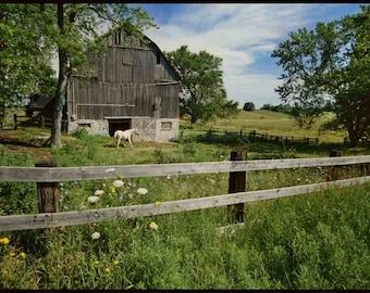 SPRING  AND SUMMER Landscapes #1