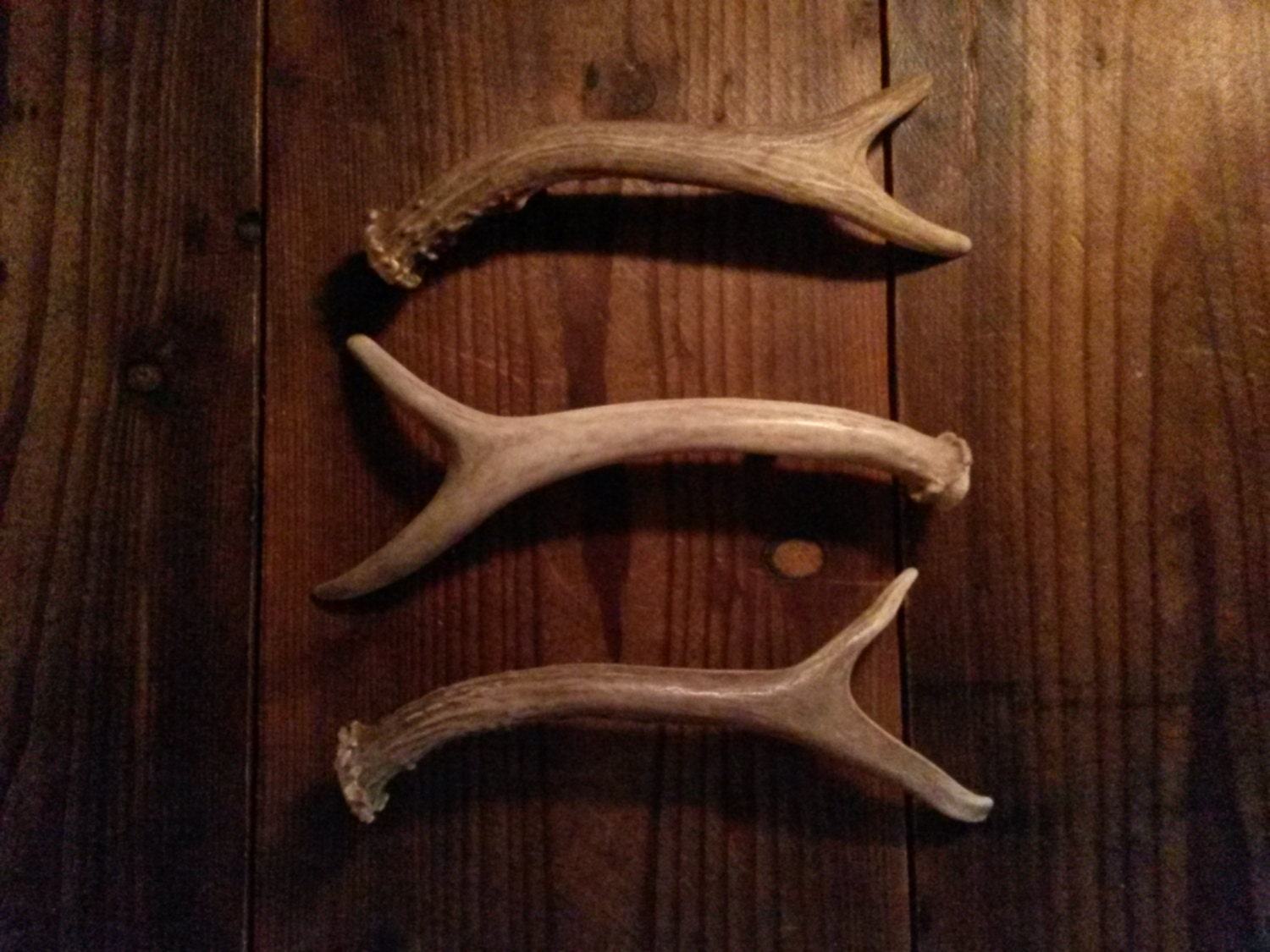 3 antler handles for cabinet doors and drawers dressers gun 87946
