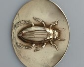 Early 20th Century BEETLE Sash Pin BROOCH Embossed Brass
