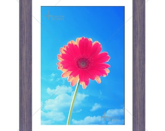 Gorgeous Pink Flower Against Blue Sky Floral Photographic Print - Various Sizes - Gift Idea