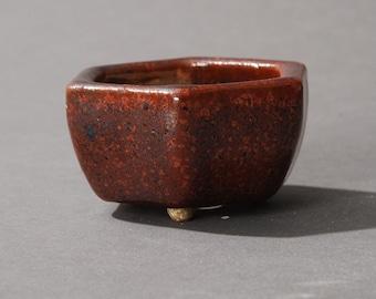 Mini Bonsai pot Hexagonal Red and Black