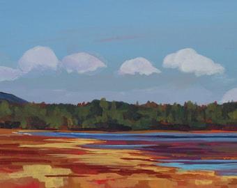 Maine Landscape Katahdin Marsh