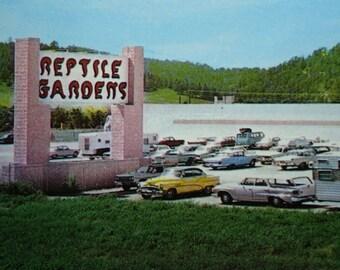 Vintage Postcard Reptile Gardens Rapid City South Dakota US 16 Black Hills
