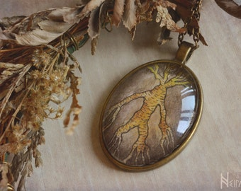 Mandrake cameo