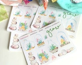 Succulent Sampler Stickers, Bible Stickers, Planner Stickers