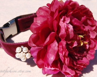 Modern dog collar,wedding dog collar.Birthday party dog collar.  wine red flower dog collar.pet gift, Pet Birthday gift