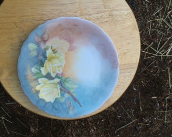 Gorgeous hand painted plate