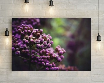 Purple Buds Canvas Art, wall art canvas, canvas print, nature art, nature photography, nature prints
