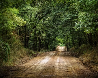 Country Road Photograph, Woodland Dirt Road Landscape in Color or Black and White, Rustic Landcape Fine Art Print or Canvas Wrap
