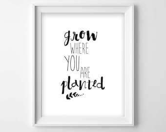 Grow Where You Are Planted, Printable Art Print, Inspirational, Motivational, Office, Dorm, Home Decor - Instant Download