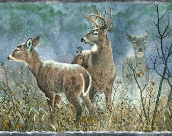 Winter Whispers by Wilmington prints.