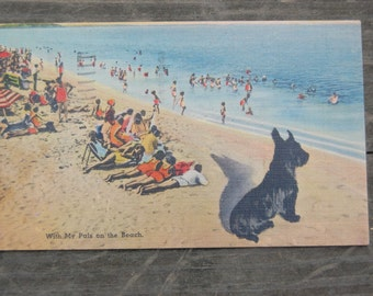 """Vintage Wildwood NJ Postcard 1940s Scottish Terrier """"With My Pals on the Beach"""" 1948 New Jersey Shore"""