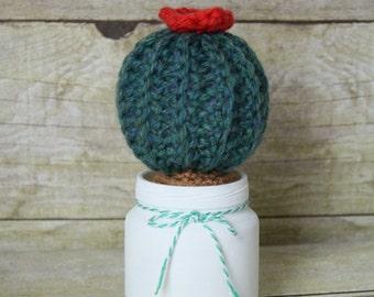 The Cutie - Crocheted Succulent