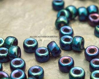20 Blue Iris 6mm Crow Roller Pony Czech Glass Beads (SB211)