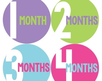 Monthly Baby Stickers Baby Month Stickers Baby Girl Month Stickers Monthly Photo Stickers Monthly Milestone Stickers 303