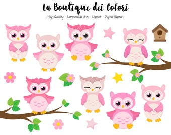 Pink Baby Owls Clipart, Cute Graphics PNG, Birds, animals, Its a girl, baby shower, nursery Owl Clip art, Planner Stickers Commercial Use
