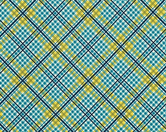 Shelburne Falls Complex Plaid - Willow by Denyse Schmidt for Free Spirit Fabrics, 1/2 yard, PWDS042.Willo