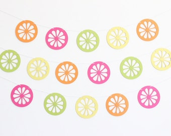 Citrus Lemon, Lime Orange, and Grapefruit Party Banner - Customizable Colors