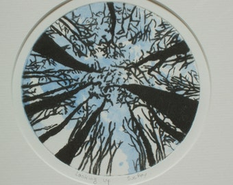 Original Drypoint/Monoprint - Looking up at Trees