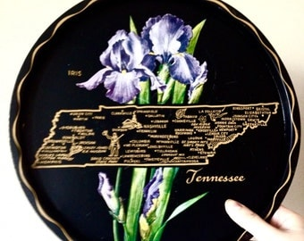 Tennessee Souvenir Plate - metal