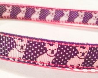 Precious Frenchie dog collar