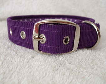 Purple Cordoroy Dog Collar with purple polka dot lining and buckle