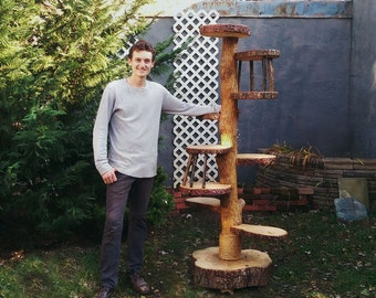 Custom Cat Trees - Artistic Cat Furniture - Rustic Designs Done Completely At Your Request!