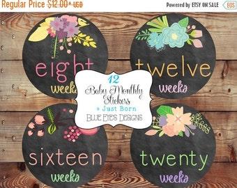 ON SALE Pregnancy Belly Stickers,Chalkboard Flower Pregnancy Stickers,Bump Stickers, Pregnancy Tracker,Pregnancy Gift P0400