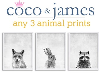 Set of Three Woodland Animal Art Nursery Prints Black and White Art Bunny Print Fox Raccoon Kids Room Decor Nursery Wall Art Grey Prints
