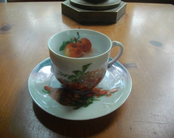 Bavarian Fine China Iridescent Tea Cup and Saucer