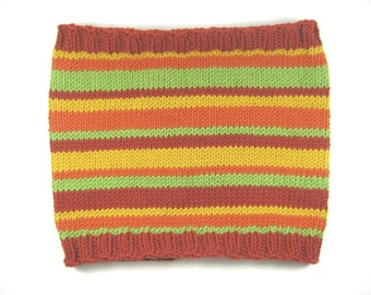 Striped Cowl, merino wool, hand knit, multicolor, autumn colors, wool cowl, knit cowl, neck warmer, accent cowl, neckwarmer, fall colors