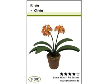 Clivia Do It Yourself Kit in 1/12 Scale