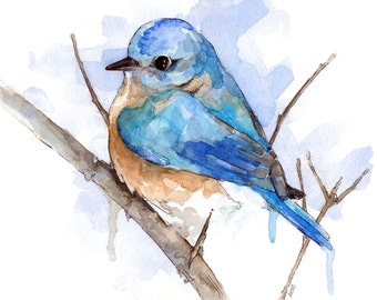 Bluebird Painting Print From Original Watercolor Painting Bluebird Home Decor