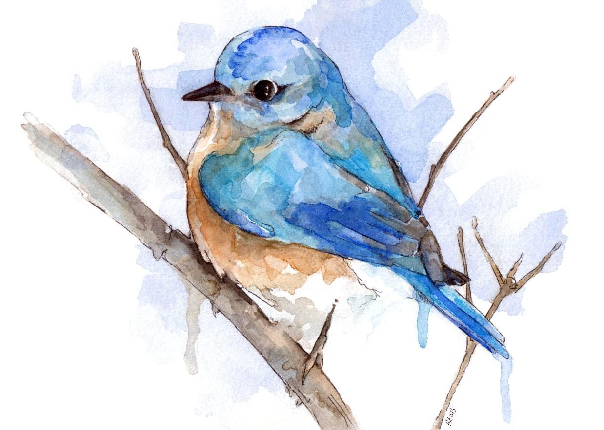28 Blue Bird Art Print Watercolor Bluebird Painting
