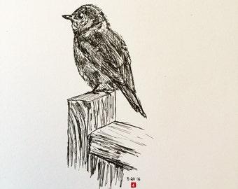 KillerBeeMoto: Original Pen Sketch Of A Bluebird on a Bird House