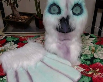 owl head and tail