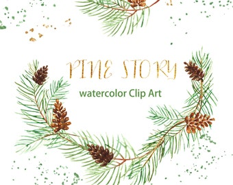 Pine Watercolor clip art hand drawn. Winter watercolor, light green, tender green branches, wedding invitation, wreath and arrangements.