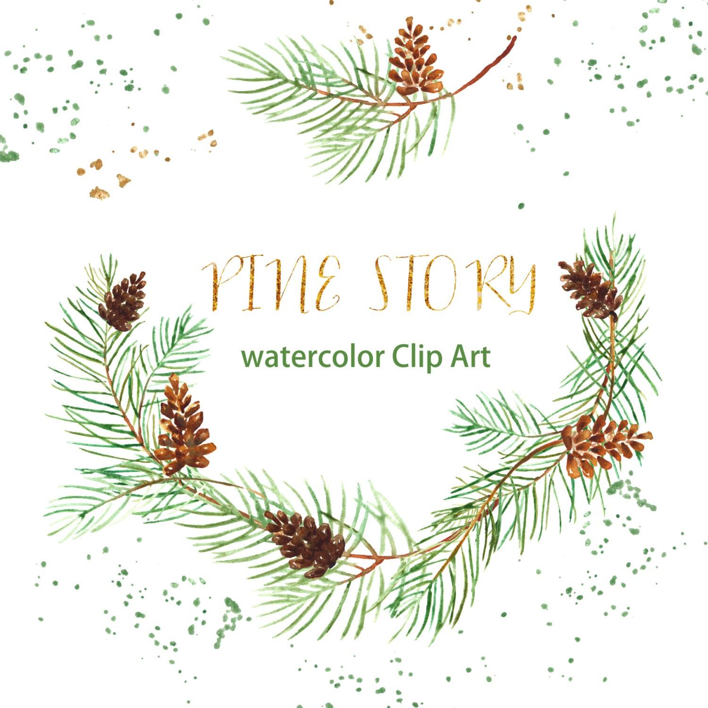 Pine Watercolor clip art hand drawn. Winter watercolor ...