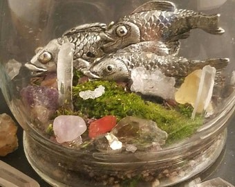 Small Crystal Zen Terrarium adorned with pewter Koi Fish and live moss!! Many different crystals included. Perfect for home,  office,  apt..