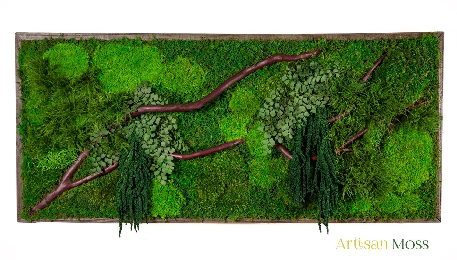 40 x 18 artisan moss real preserved plants in. Black Bedroom Furniture Sets. Home Design Ideas