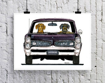 Dachshund Pontiac GTO    Greetings card  /  Art print