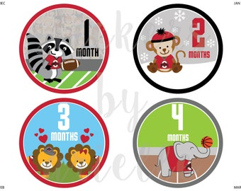 Month by Month Baby Stickers - Ohio State Theme