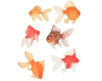 Watercolor Goldfish Original Painting Six Colorful Fish