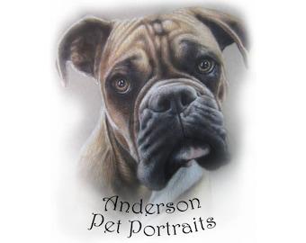 Custom colored pencil single pet portrait