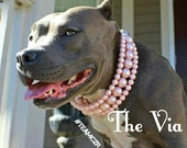 The Via in Pink~ Pearl Dog Collar,Cat collar, Buckle Collars, Martingale Collars, Dog Pearls UNBREAKABLE GUARANTEE!