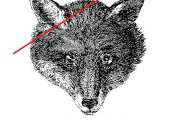 Vintage foxy - temporary tattoo